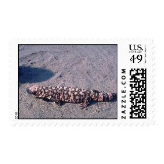 Gila Monster Lizard Stamp