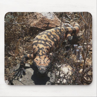 Gila Monster Mouse Pad