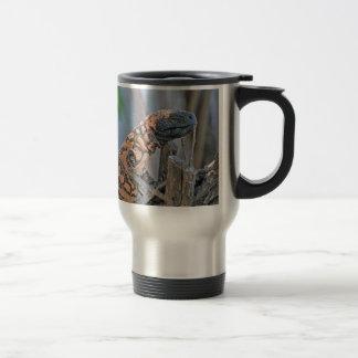 Gila Monster Coffee Mugs