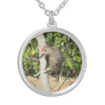 Gila Woodpecker Necklace