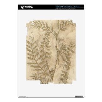 Gilded Foliage I Skins For iPad 3
