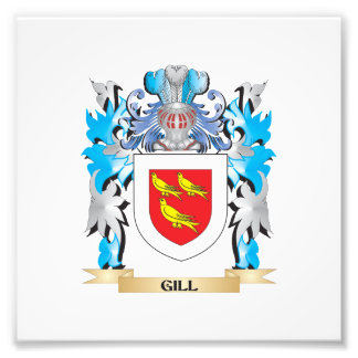 Gill Coat of Arms - Family Crest Art Photo