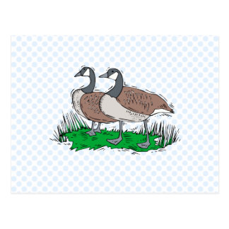 Gillie & Ginnie Goose Postcard