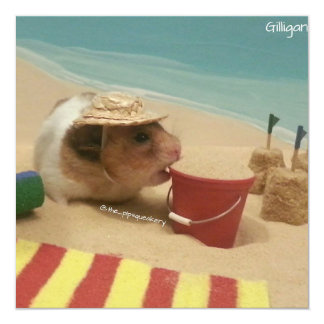 Gilligan Goes to The Beach Card
