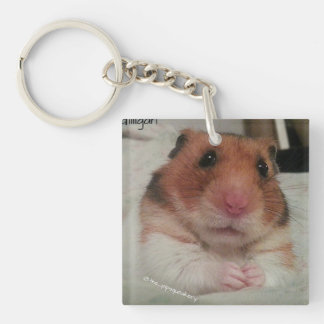 Gilligan is Very Concerned! Keychain