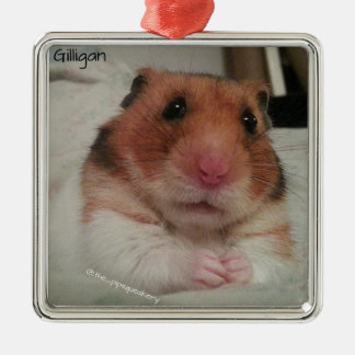 Gilligan is Very Concerned! Metal Ornament