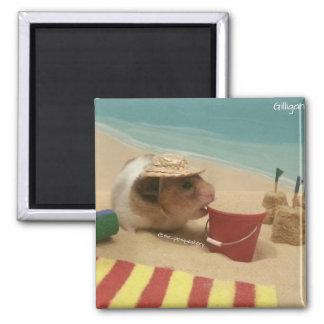 Gilligan va a la playa imán cuadrado