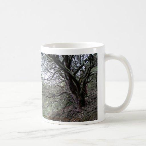 Gilroy Hot Springs mug - manzanita