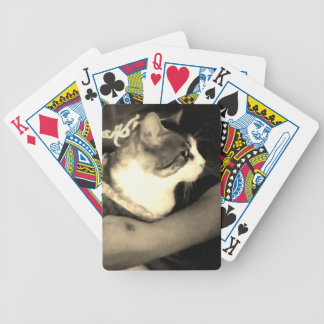 Gimpy playing cars bicycle playing cards