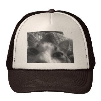 Gimpy trucker hat