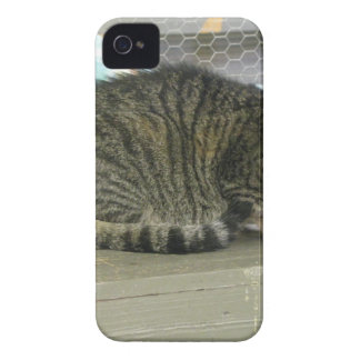 Gina iPhone 4 Case-Mate Protector