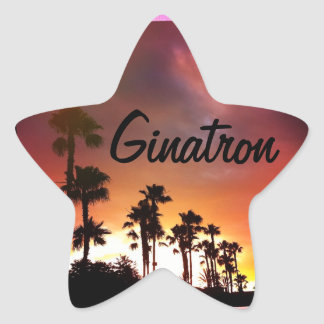 Ginatron Star Sticker