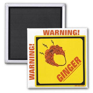 Ginger Alert! Magnet