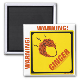 Ginger Alert! Magnets