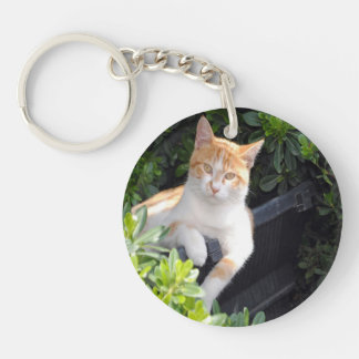 Ginger and White Cat Keychain