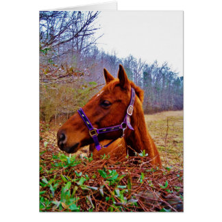 Ginger Brown Horse Card