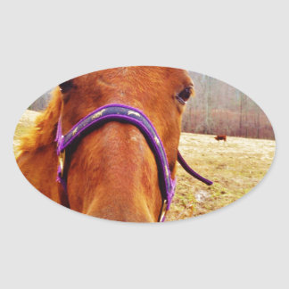 Ginger Brown Horse Face Oval Sticker