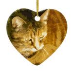 Ginger cat ceramic ornament
