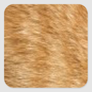 Ginger cat fur square sticker