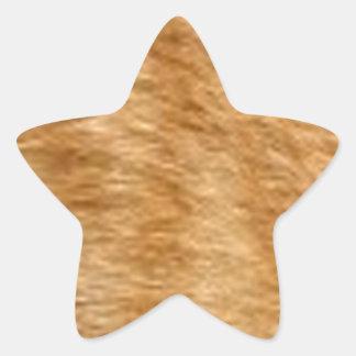 Ginger cat fur star sticker