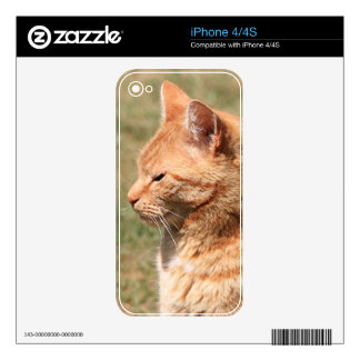 Ginger cat iPhone 4S decal