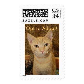 Ginger Cat Postage Stamp