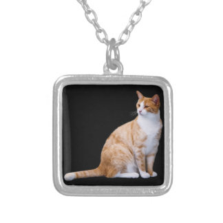 Ginger Cat Silver Plated Necklace