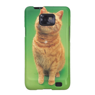 Ginger cat sitting, looking upwards samsung galaxy SII case