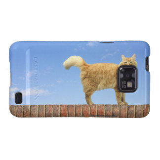 Ginger Cat Standing on Brick Wall Galaxy S2 Cover