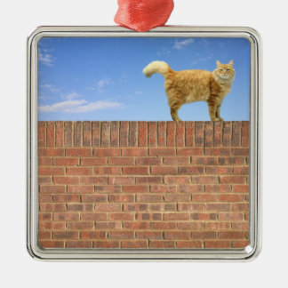 Ginger Cat Standing on Brick Wall Metal Ornament