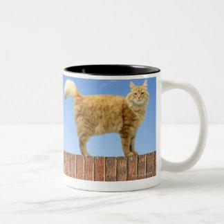 Ginger Cat Standing on Brick Wall Mugs