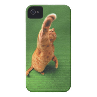 Ginger cat stretching out paw iPhone 4 Case-Mate cases