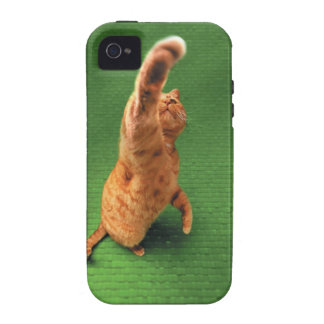 Ginger cat stretching out paw iPhone 4/4S cases