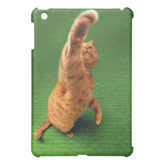 Ginger cat stretching out paw case for the iPad mini