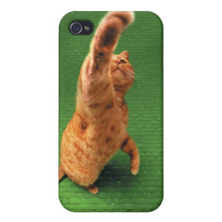 Ginger cat stretching out paw iPhone 4 covers