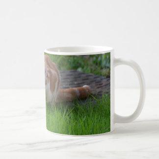 Ginger Cat Watching Coffee Mug
