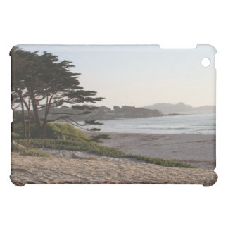 Ginger Che Carmel Horizons iPad Case