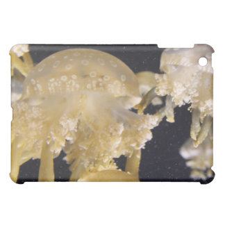 Ginger Che Intimate Jellyfish Experience III iPad Cover For The iPad Mini