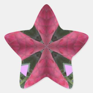 Ginger Flower Blessings! Star Sticker