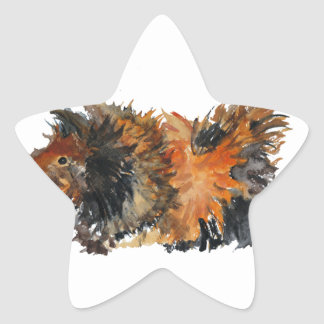 Ginger Fluffy Guinea Pig Watercolour Painting Star Sticker