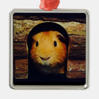Ginger Guinea Pig Gifts Metal Ornament