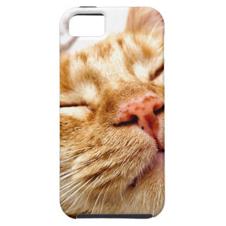 Ginger iPhone SE/5/5s Case