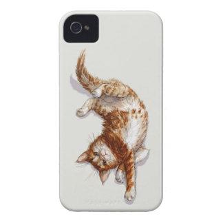 Ginger Kitten Case-Mate Blackberry Bold 9700/9780 iPhone 4 Case-Mate Cases