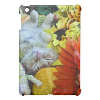 Ginger Kitten in Fall Autumn Harvest, Thanksgiving iPad Mini Covers