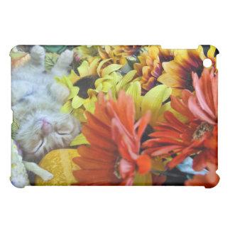 Ginger Kitten in Fall Autumn Harvest, Thanksgiving iPad Mini Cases