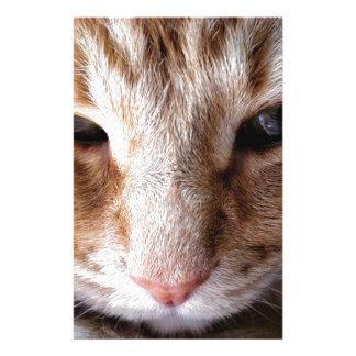 Ginger Kitten Stationery