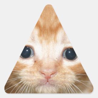 Ginger kitten triangle sticker