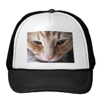 Ginger Kitten Trucker Hat