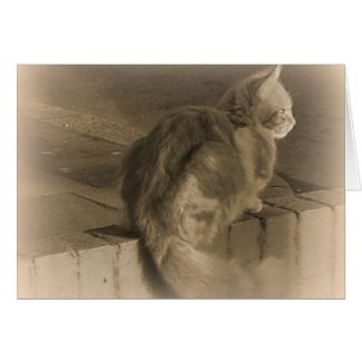 Ginger Kitty on Wall Sepia Tone Greeting Card