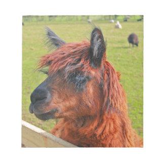 Ginger Llama Notepad